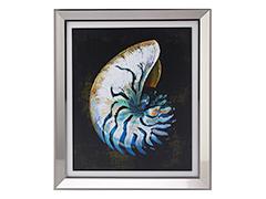 Seashell no.1