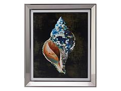 Seasheel no. 2